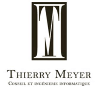 thierry meyer consultant