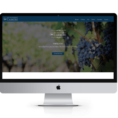 vignobles carrere site internet